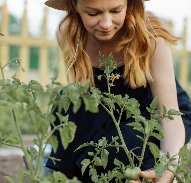 How to Get Started With Urban Vegetable Gardening